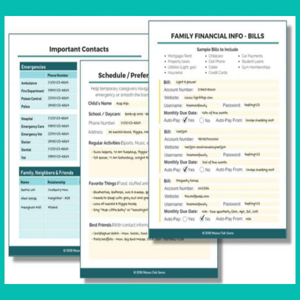 Printable Important Documents Binder Worksheets and Documents Checklist