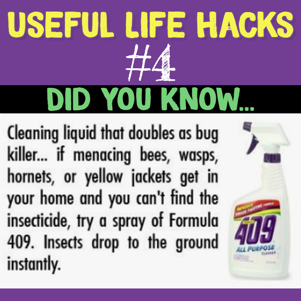 Clever hack using a common cleaner as a bug and insect killer.. Useful life hacks to make life easier - household hacks... MIND BLOWN!